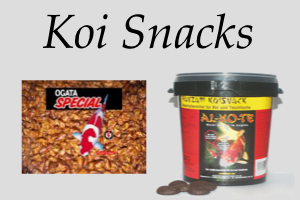 Koi Snacks
